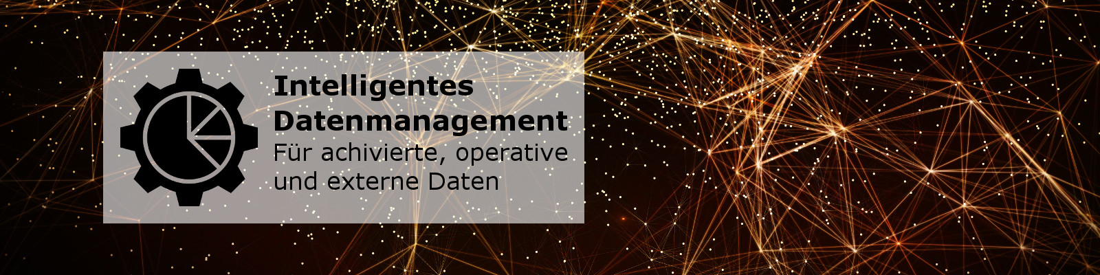 Datenmanagement Banner